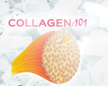 Collagen 101