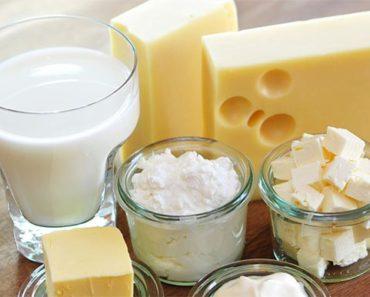 Probiotics Lactose Intolerance