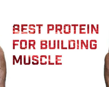 Best protein for building muscle