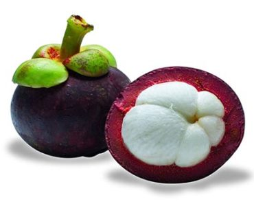 Garcinia Mangostana Weight Loss