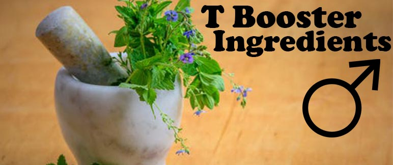 T Booster Ingredients