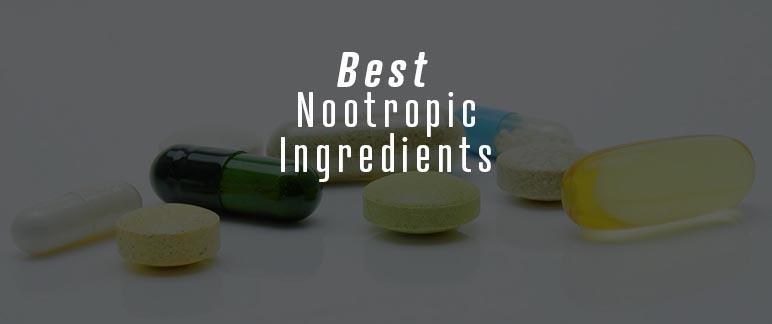 Best Nootropic Ingredients